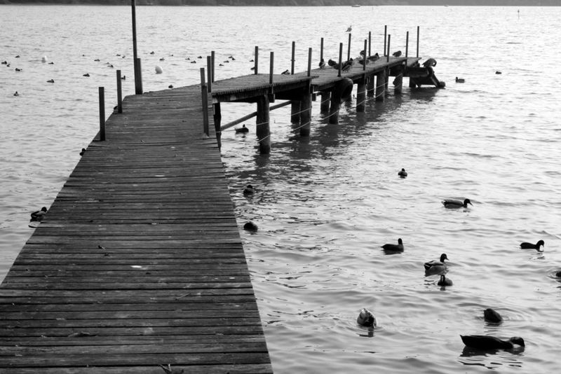 Ammersee-Blog