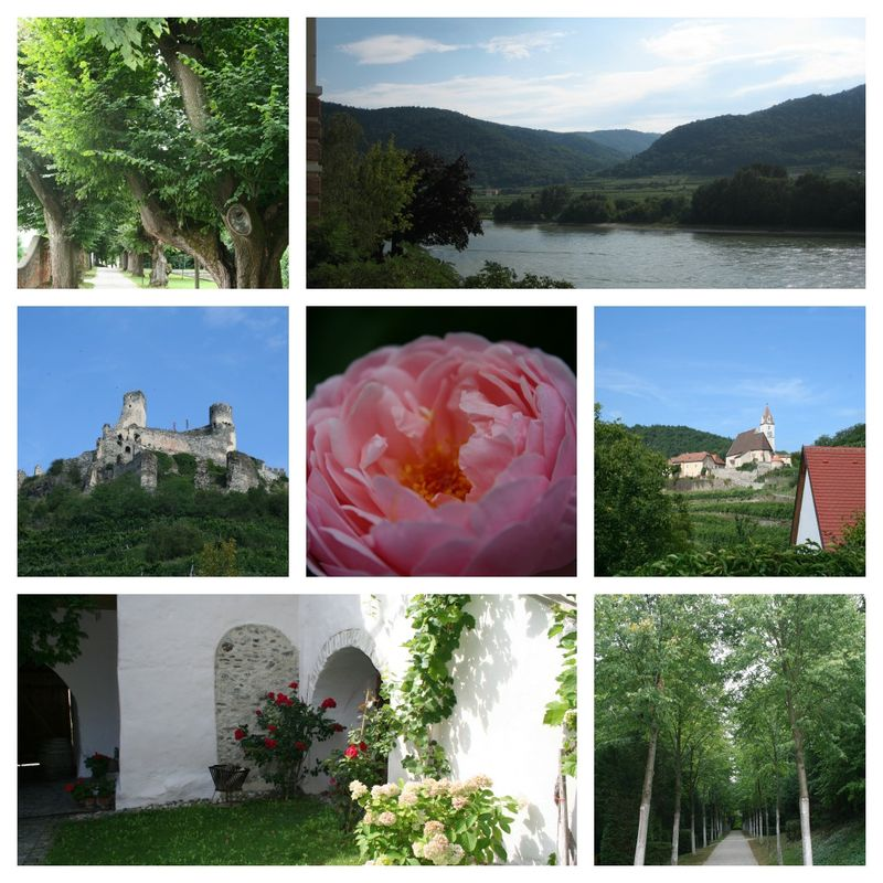 PicMonkey Collage_Wachau