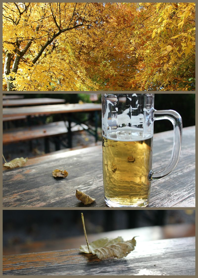 PicMonkey Collage_Herbstgold