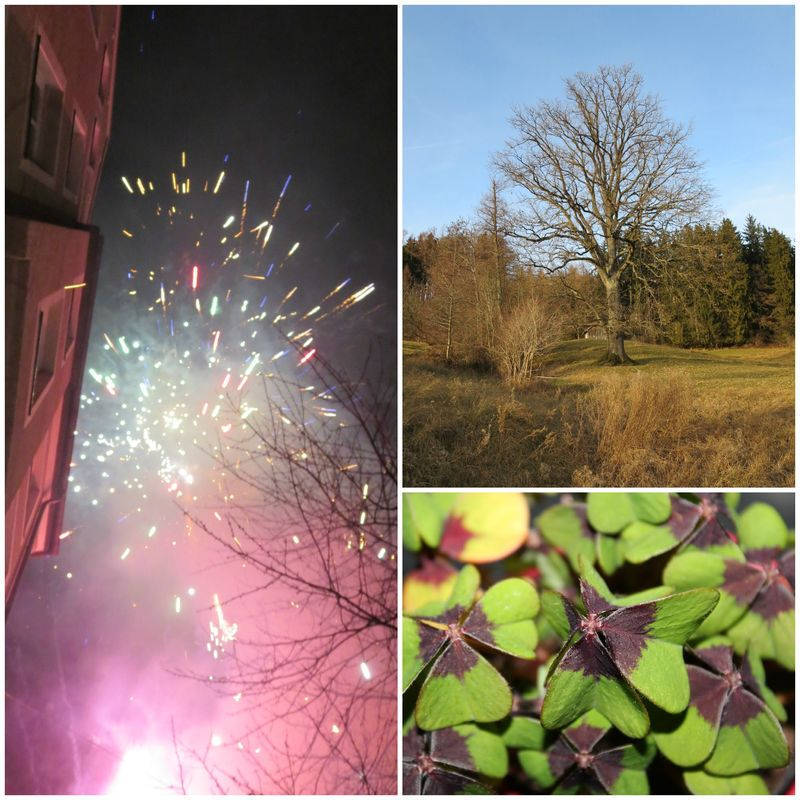 PicMonkey Collage_neujahr2014